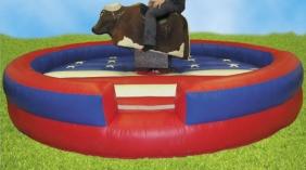 Rodeo Bull Ride