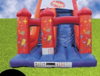 20ft Party Slide